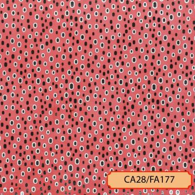CA28/FA177