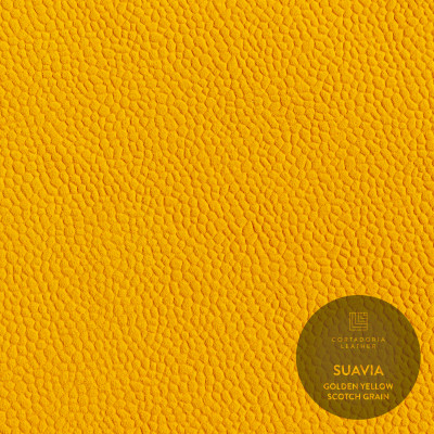Suavia_Golden Yellow_Scotch Grain