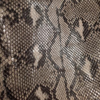 Python Starfish