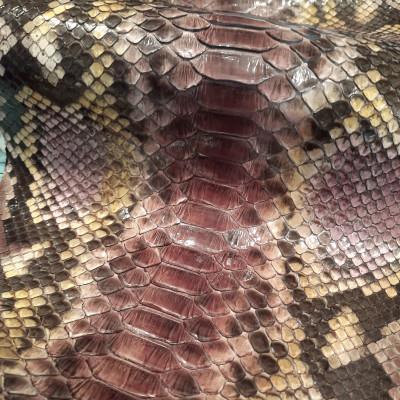 Python Skitty Purple Dk Brown