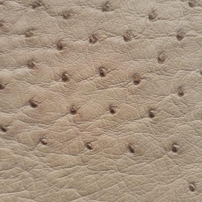 Pelle del corpo di struzzo