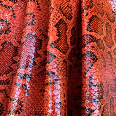 Zambia Snake