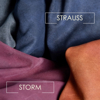 STRAUSS - STORM